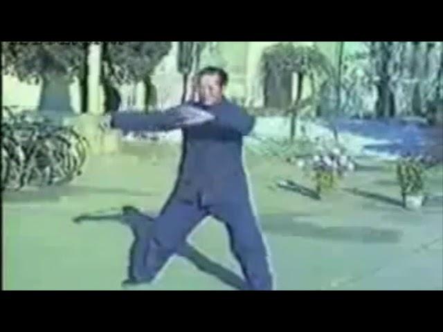 Tian Xiu Chen - Tai Chi style Chen Xinjia Yilu [陈氏太极拳新架 Taijiquan style Chen]