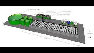 3 fish tanks 4 growbeds made aquaponics