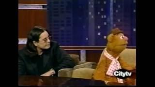 OZZY AND FOZZIE BEAR