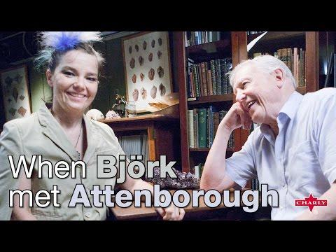 Trailer do filme When Björk met Attenborough