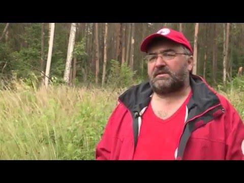 Как искать человека в лесу