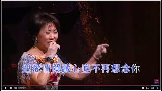 15. 潘秀瓊 - 意亂情迷 (潘秀瓊真我風采半世紀演唱會)