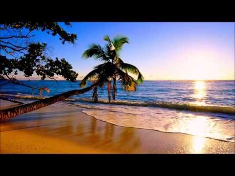 Trance & Progressive - Falling Star - Compilation 19 Ver. 1 (132bpm) (Aug. 2015)