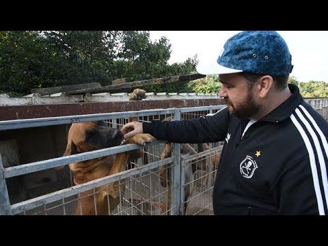 Sam Hammington Witnesses S. Korea Dog Farm