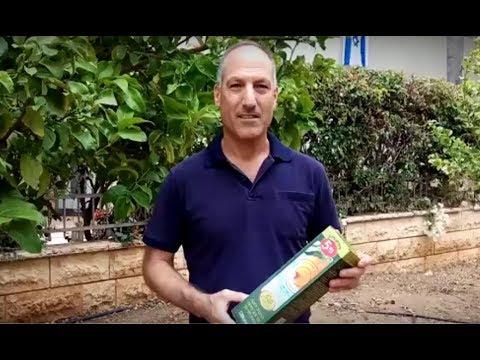 הדברת זבובי פירות בגינה - בשיטת פטנט ישראלית, הכי יעילה וידידותית!