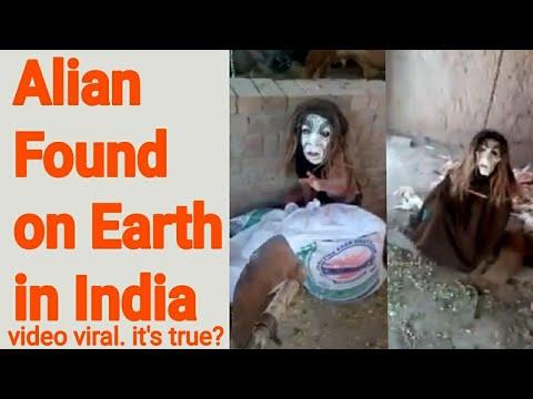 Alien Found in Ludhiana (India) 2018 👽   Creature WhatsApp Viral Video