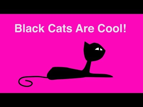 Black Cats Are Cool 2017