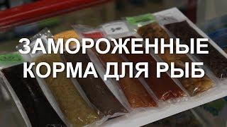 Замороженные корма для рыб: виды и назначение