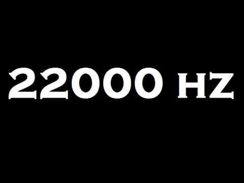 22000 Hz