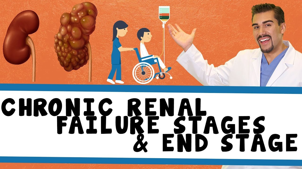 Chronic Renal Failure Stages End Stage Renal Failure Part 1 Youtube