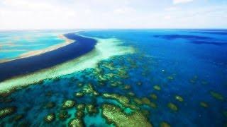 Grenier: Financial Benefit in Conserving Oceans