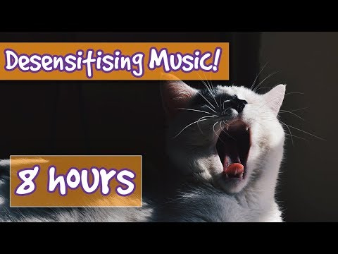 CAT DESENSITISING MUSIC! Relaxing Music Combined with Sound Effects to Desensitise Cats to Noises!🐱