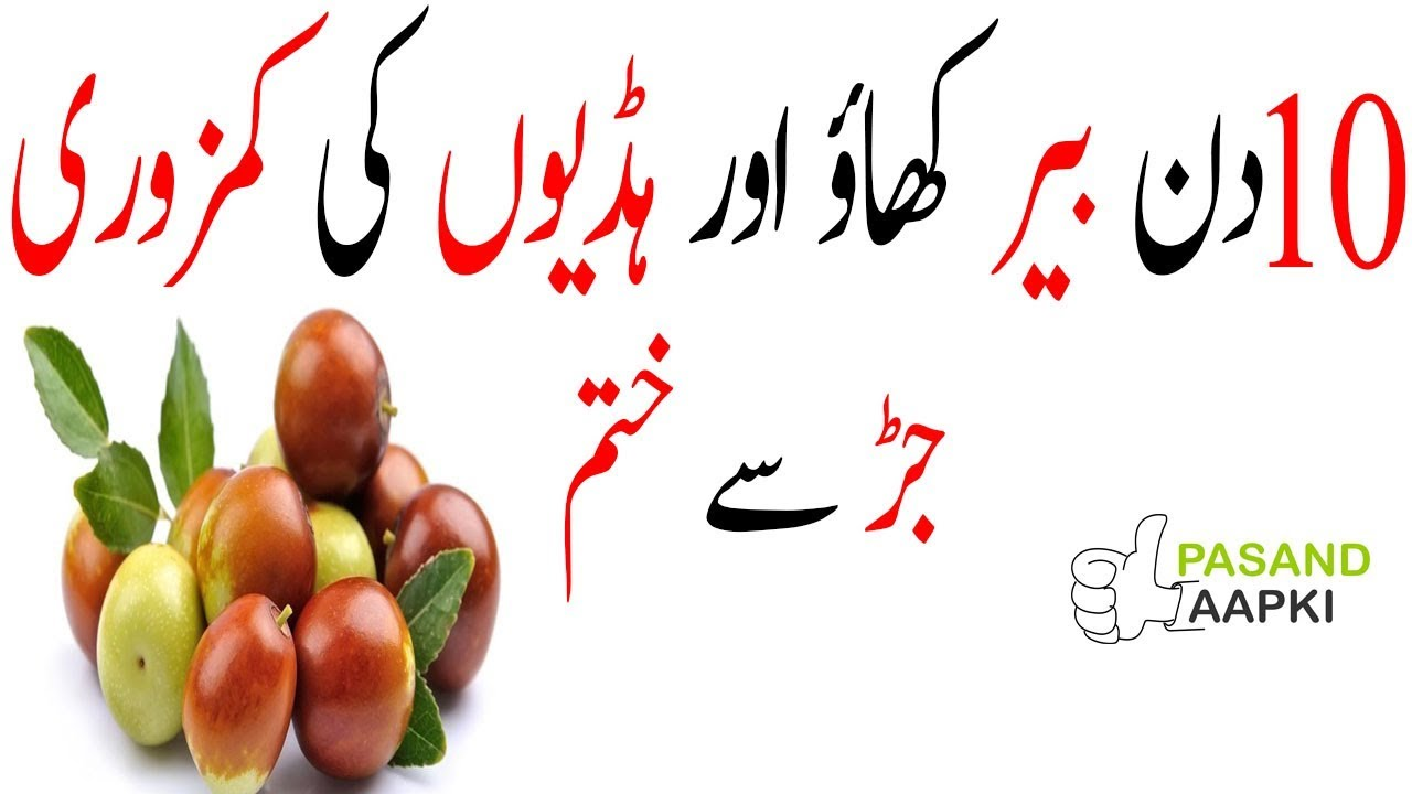 jujube : jujube fruit : jujube tree of full information in urdu with Dr Khurram:Pasand Aapki