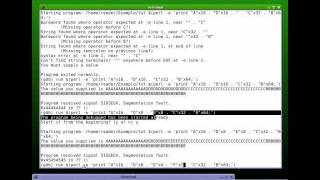 Buffer Overflow Tutorial - Part 5
