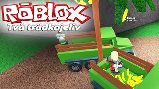 Två trädkojeliv! #3 - Roblox
