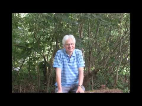 Jim Newsom - Open Spaces