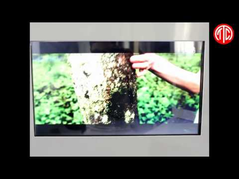 22 inch Transparent lcd advertising player