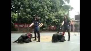 ROMUSHA 2012 : 28 Fest (Dance Competition)
