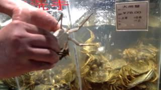 Dazha kraby