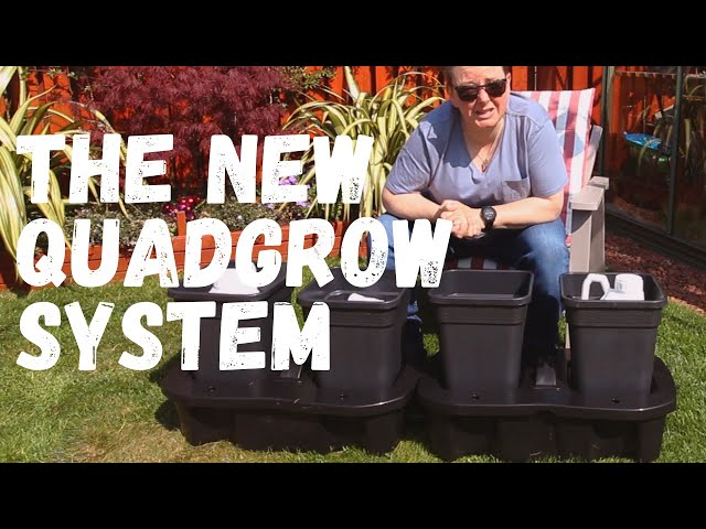 Looking at the new quadgrow self-watering planter