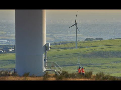 Rise of renewables Wind farms generate MORE electricity than coal plants