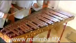 Marimba DF contrataciones grupos musicales para fiestas 5534877454.mp4