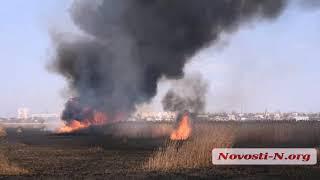 """Видео """"Новости-N"""": В Николаеве горит камыш на площади несколько десятков гектаров"""