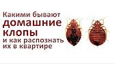 Как использовать средство Форсайт Martin-York.ru - YouTube