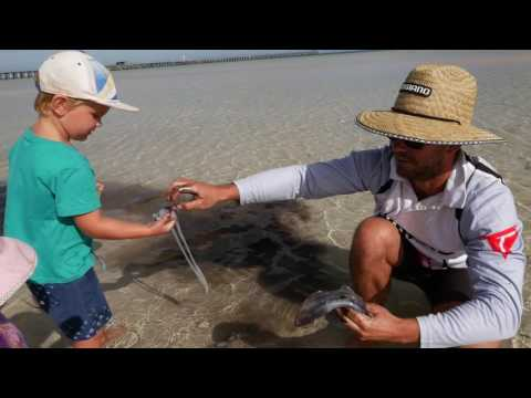 HOW TO CLEAN A SQUID -Moonta Bay Jetty