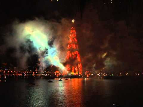 Rio lights up world's largest floating Christmas tree