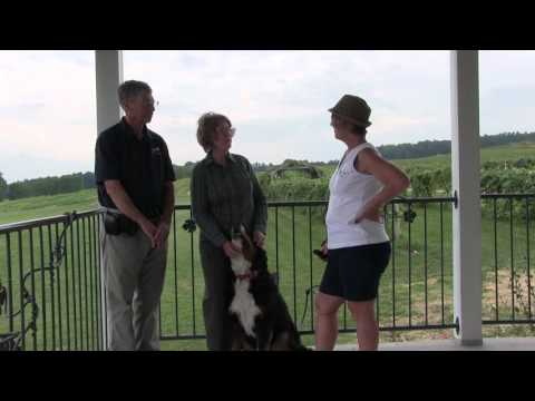 Meet the Hunts at Hunt Country Vineyards