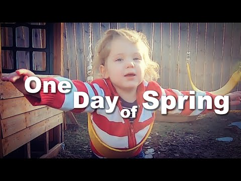 Autism| Playing Outside on the Warm Day Before it Snowed