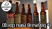 Http://www. Ratebeer. Com/beer/pauwel-kwak/3658/ 93из100. Далее цитата: на самом деле, пиво. Кто хоть раз в жизни увидел бокал под пиво kwak навсегда запомнит его необыкновенную форму. А история этого бокала такова. Средняя цена по москве 250-350р за 0. 3. В человека влезет не больше 10.