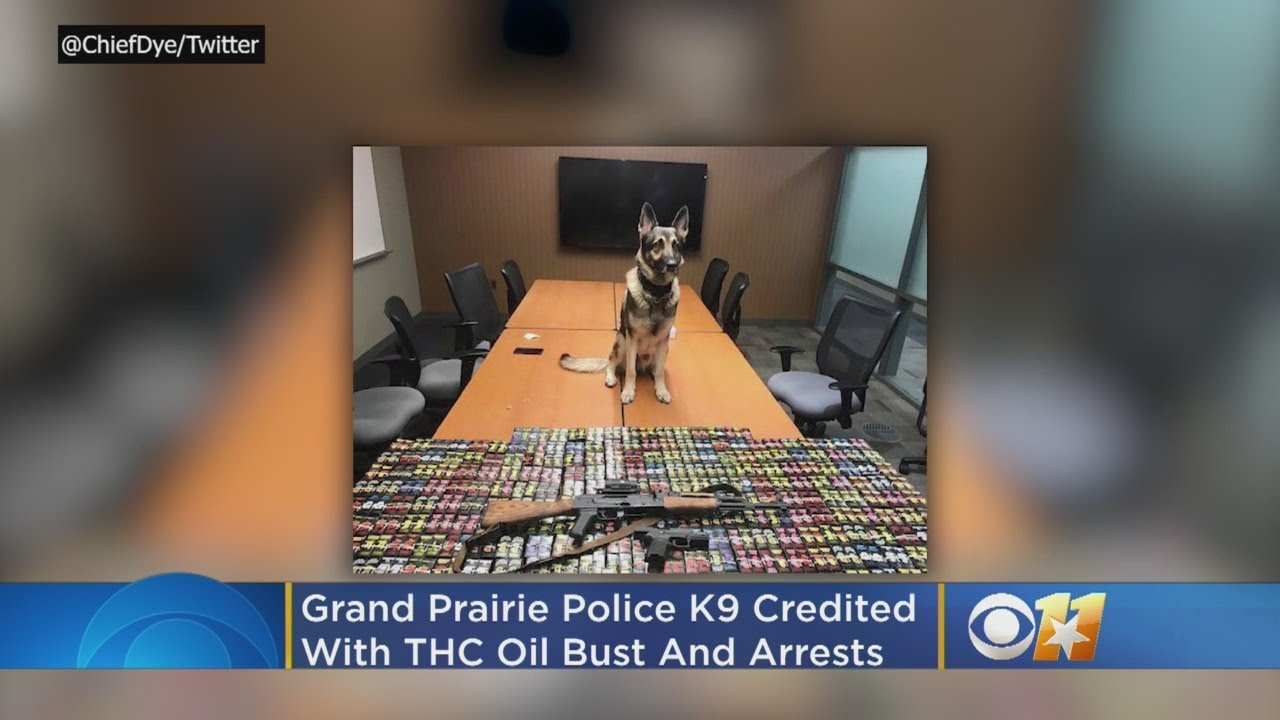 Grand Prairie Police K9 Credited With Helping In Drug Bust, 2 Arrests