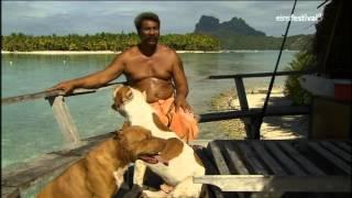 Inseltraum bei Bora Bora