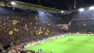 Amazing! Celebration of the fans of