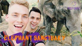ELEPHANT JUNGLE SANCTUARY | Travel Vlog | Will and James