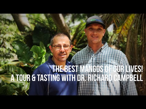 World's Best Mango Tour & Tasting with Dr. Richard Campbell The Mango Master