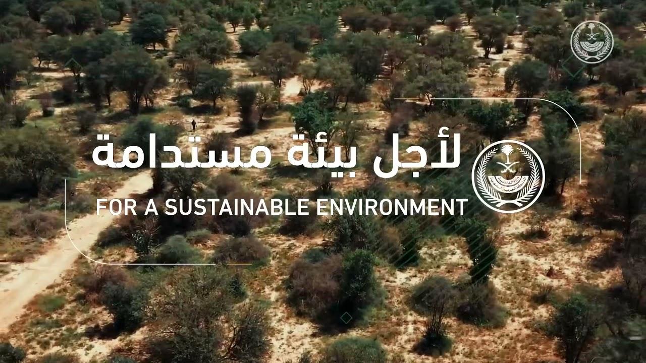 ضبط (91) مخالفًا لنظام البيئة في عدد من المواقع في المملكة ..