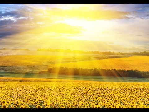 "Peaceful Music, Relaxing Music, Instrumental Music, ""Light Ever Shining"" by Tim Janis"