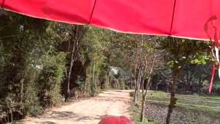 Ox Cart trek