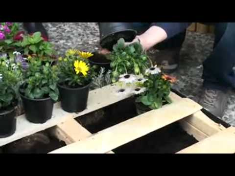 Μετατροπή παλέτας σε κήπο!