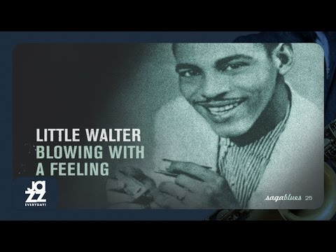 Little Walter, Jimmy Rogers - Sloppy Drunk