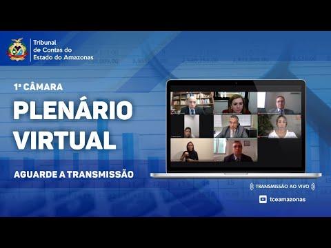 2ª Sessão Ordinária da Primeira Câmara - 2ª Sessão Virtual