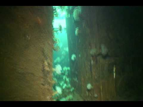 Ship Wrecks  | More Bell Island Shipwrecks