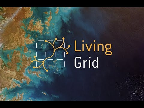 The Living Grid – energy inspired by life