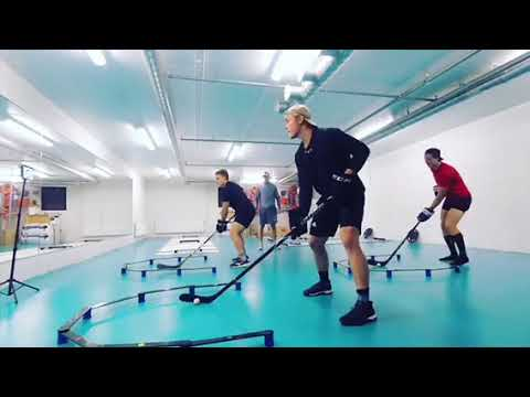 IH Pro NHL preseason camp with Max Ivanov . Julius Honka Dallas Stars