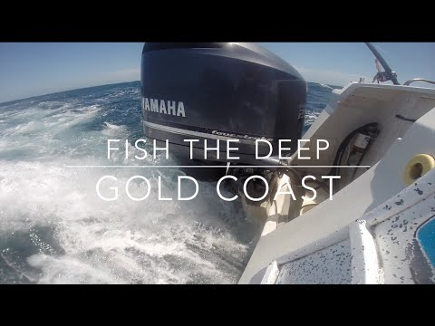 King Fish, Snapper, Jew And Tusk Fish With Fish The Deep Charters Gold Coast