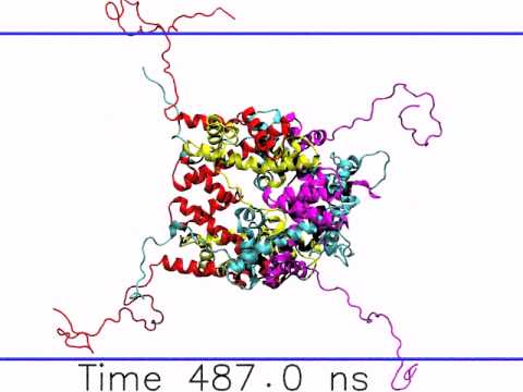 The 1 microsecond histone octamer dynamics (without DNA) - YouTube
