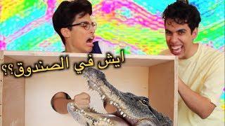 ايش الي في الصندوق؟ ٤ | تمساح في بيتنا